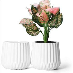 Potey Ceramic Planters Plant Flower Pots - 2PCS